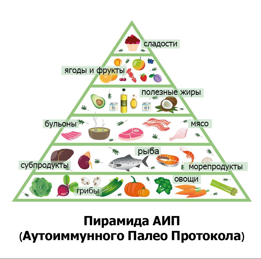 палео АИП пирамида питания